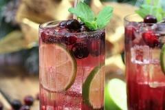 Cranberry Mojit